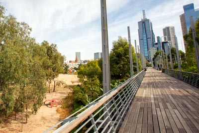 Boardwalk (edged by ferns) leading towards the Melbourne city