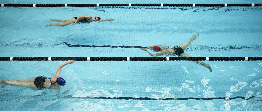 Three swimmers doing laps in a pool