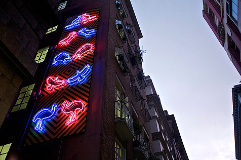 Neon signs of emus and other Australian native animals on side of apartment building