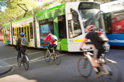 Trams and cyclists on city street