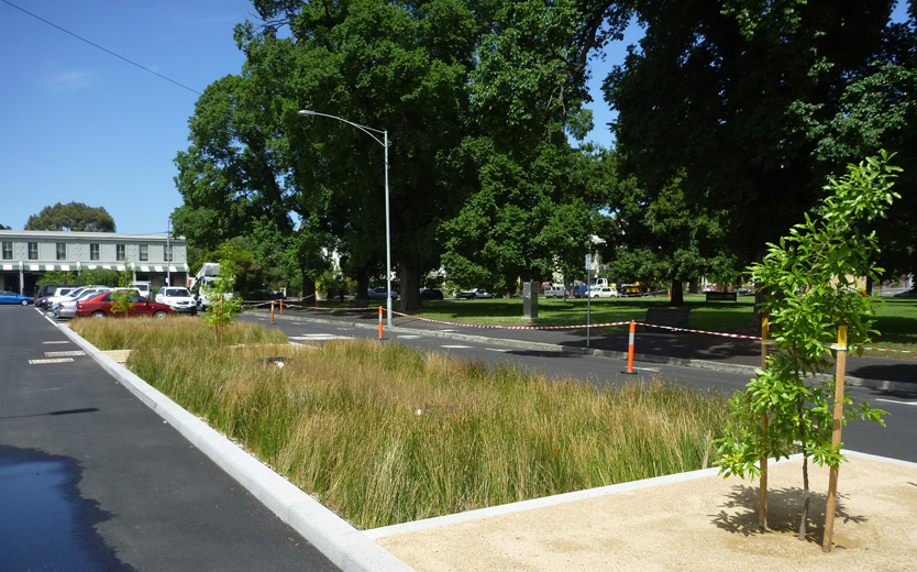 Darling Street bioretention bed