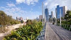 Greening the city